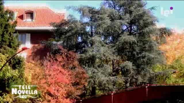 Telenovella a casa di benedetta parodi video sky for A casa con benedetta