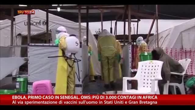 Ebola, primo caso in Senegal. Oms: 3mila contagi in Africa