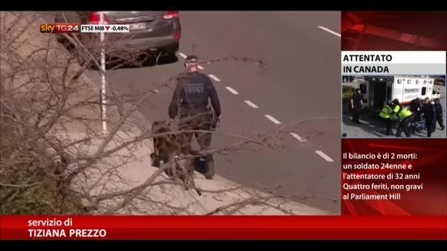 """Terrorismo, l'inquietante figura del """"lupo solitario"""""""
