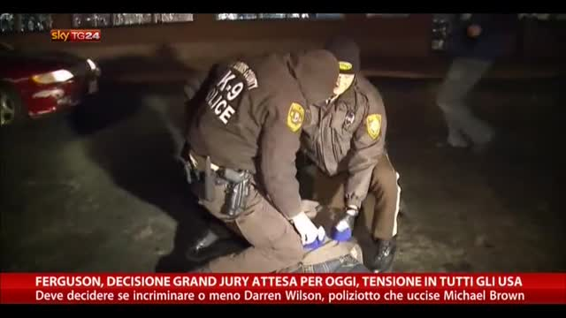 Ferguson, decisione Grand Jury attesa per oggi