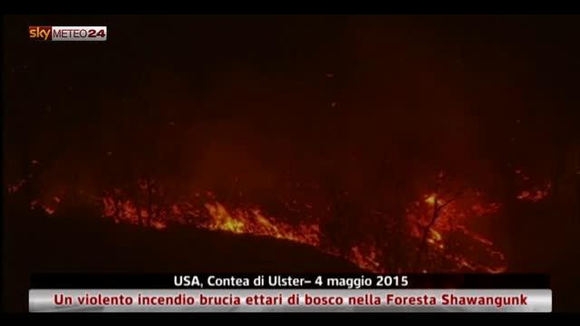 Un incendio brucia ettari di bosco nella Foresta Shawangunk