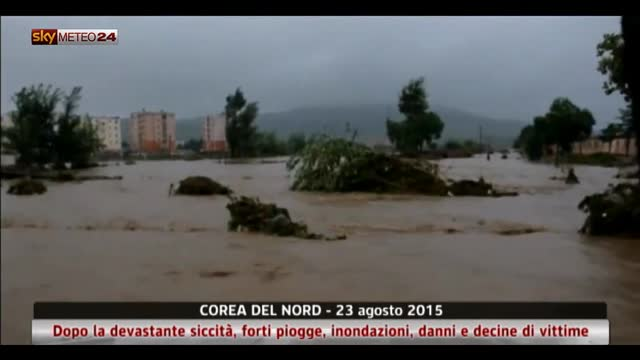 Maltempo associato al tifone Goni in Corea del Nord