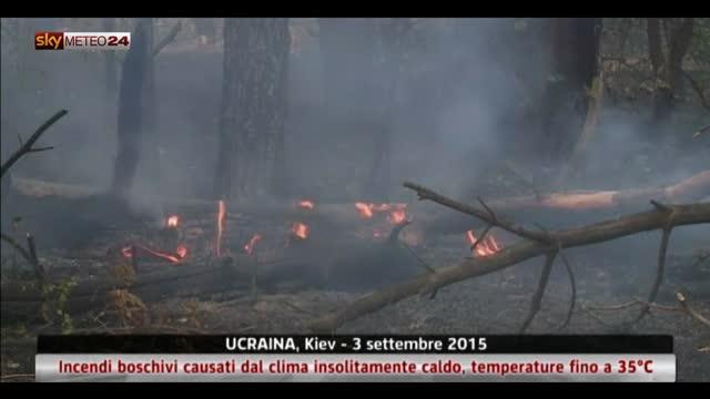 Incendi, 30 ettari bruciati in Ucraina