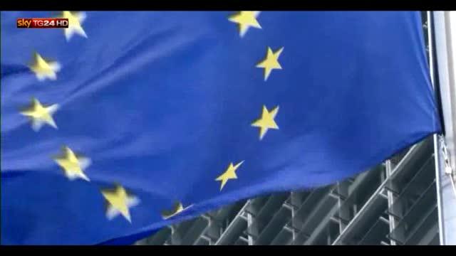 Boldrini, Consultazione pubblica su Unione Europea