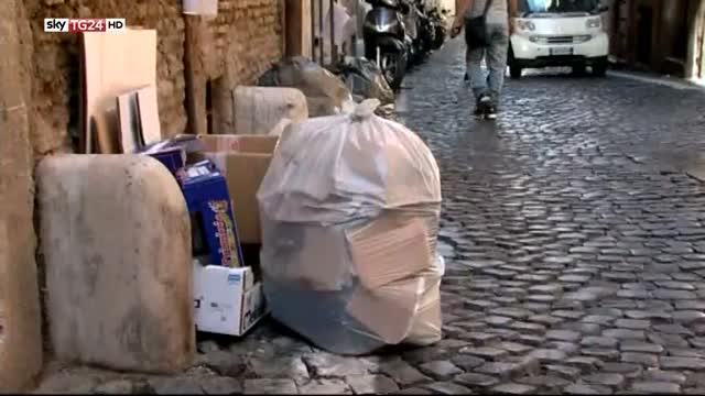 Roma, bufera sull'assessore del M5S per consulenza Ama