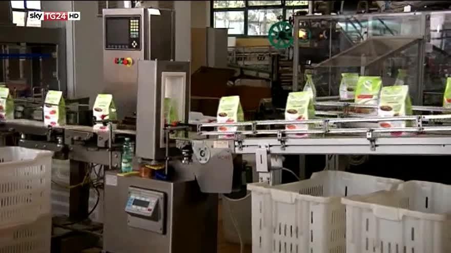 Istat, ad agosto disoccupazione stabile all'11,4%