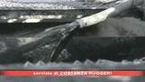 19/05/2008 - Nuovo record del petrolio