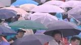GP Giappone, il trionfo di Hamilton