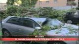 30/06/2008 - Tromba d'aria a Milano: 5 feriti