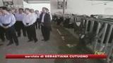 04/10/2008 - Slovacchia, tracce di melamina in latte proveniente da Asia