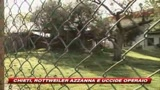 Chieti, rottweiler azzanna e uiccide operaio