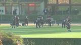 Ancelotti, ostacolo Chievo