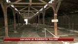 Lefevriani, Vaticano: grave per sacerdote negare Shoah