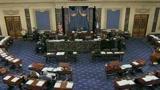 Crisi, Senato Usa modera misure protezionistiche
