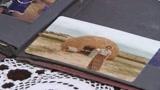 19/02/2009 - Libere le 2 suore italiane rapite in Kenya: stiamo bene