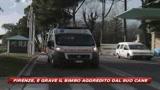 25/02/2009 - Firenze, grave il bimbo aggredito dal suo cane