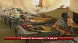 14/03/2009 - Rapiti in Darfur, la Farnesina non conferma liberazione