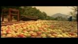 PROMETTILO! - il trailer