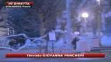 Vertice Nato, almeno 25 arresti per proteste no global