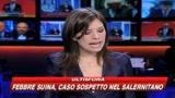 29/04/2009 - Operazione anti-droga in tutta Italia, 20 arresti