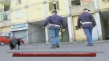 27/05/2009 - Napoli, spaccio di droga a Scampia: 27 arresti