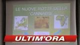 29/05/2009 - Verona, arrestati associati della 'Ndrangheta