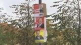 Elezioni in Germania, tedeschi domenica alle urne