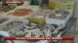 Salerno, maxisequestro di prodotti ittici mal conservat