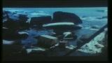 GREYSTOKE - LA LEGGENDA DI TARZAN SIGNORE DELLE SCIMMIE - il trailer