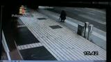 Albero di Falcone, la polizia cerca un senzatetto
