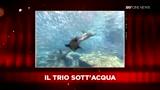 04/05/2010 - SKY Cine News: Intervista Confidenziale ad Aldo Giovanni e Giacomo