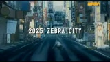 20/08/2010 - ZEBRAMAN 2: ATTACK THE ZEBRA CITY - IL TRAILER