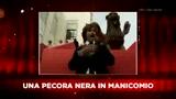 Sky Cine News: La pecora nera