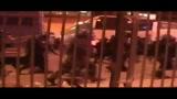 Scontri Italia- Serbia: Comandante Prov.le Carabinieri Genova
