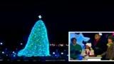 Stati Uniti, acceso l'albero di Natale alla Casa Bianca