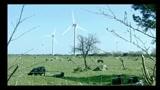 Fonti rinnovabili, decreto legislativo preoccupa imprese settore