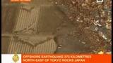 Tsunami Giappone: l'onda anomala