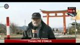 24/03/2011 - Giappone, scossa magnitudo 4.9 a Ibaraki: nessun danno