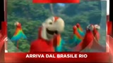 Sky Cine News presenta il film Rio