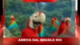 Sky Cine News presenta il film Rio
