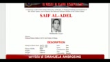 18/05/2011 - Bin Laden, l'egiziano Seif Al Adel nuovo capo di Al Qaeda