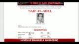 Bin Laden, l'egiziano Seif Al Adel nuovo capo di Al Qaeda