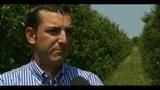 20/05/2011 - Ferrara, imprenditore 28enne dà lavoro a cassaintegrati