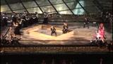 Dall'Arena di Verona La Traviata