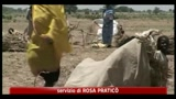 15/08/2011 - Sud Sudan, rapito operatore italiano di emergency
