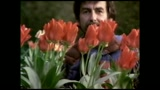 19/11/2011 - GEORGE HARRISON: LIVING IN THE MATERIAL WORLD - il trailer