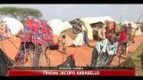 Somalia, da Kenya e Etiopia nuova guerra agli Shebab