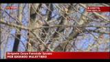 Incendio Vado Ligure, le parole della Forestale di Savona