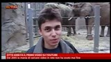 23/04/2013 - Otto anni fa il primo video su youtube