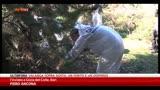 28/12/2013 - Trovata morta donna scomparsa due giorni fa nel barese